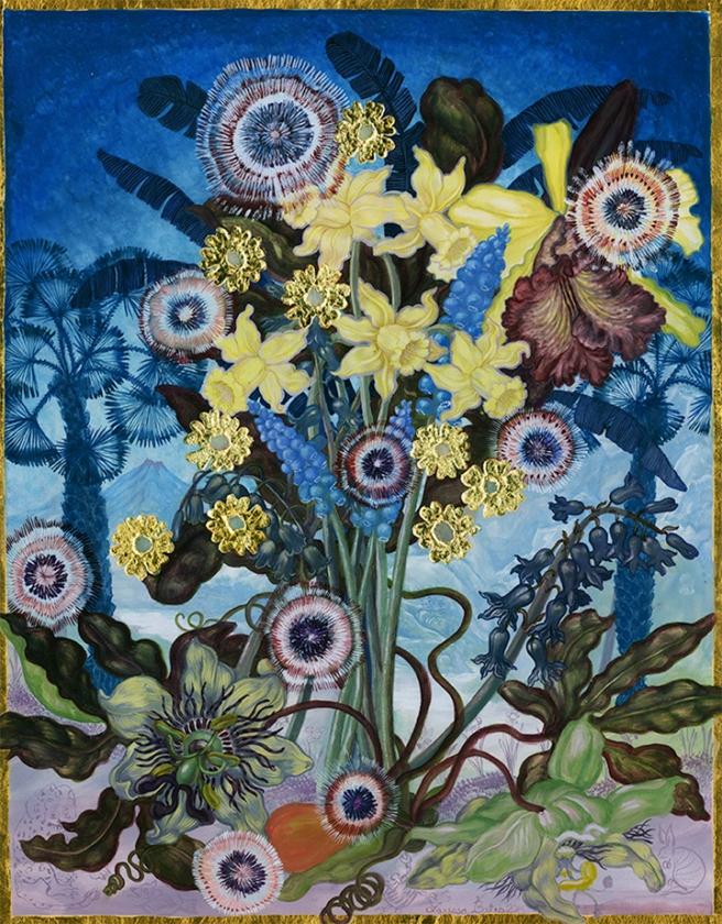 Larissa-Bates-Economic-Botany-Narcissus-Enconchada,